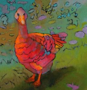"""Wary Gander II     10"""" x 10"""" framed        original pastel                $225"""