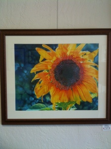"Sunflower by Jeannie Vodden  20"" x 27"" Framed Giclee Print"