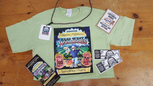 Walldog merchandise and informational pamphlets